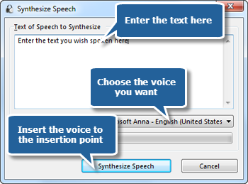 Insert the Converted Speech